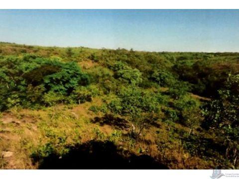 se vende terreno en la mesa del centro 63 hectareas