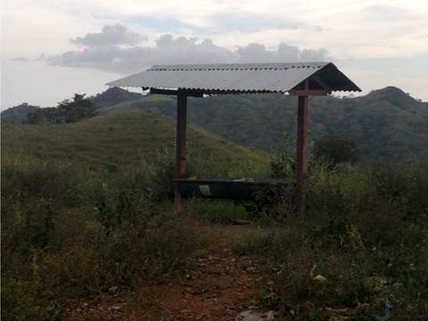 vendo finca 47 hectareas en canas de tonosi