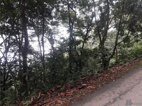terreno 3 hectareas en monte fresco cerro azul precio negociable