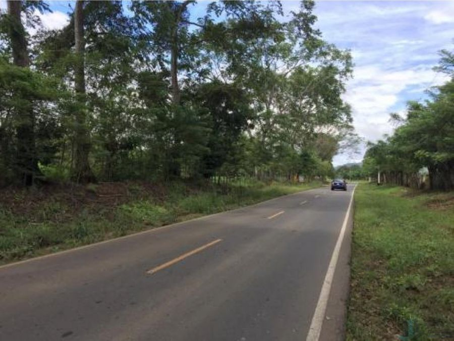 terreno via aguacatal