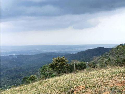 terreno con casa en buena vista cerro azul 2400 m2