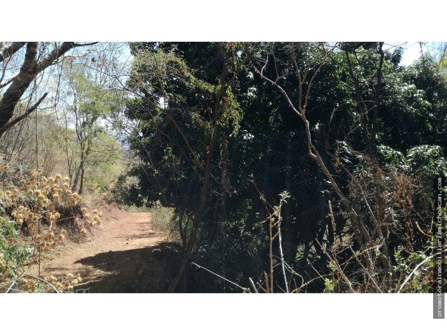rancho 40 hectareas la chupa rosa tzitzio michoacan