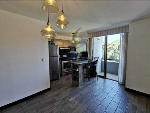 alquiler de apartamento zona 10