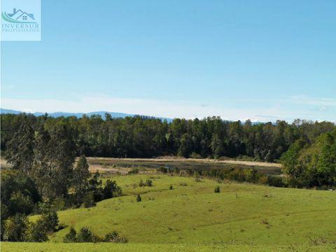 hermosas parcelas 5000 mts2 en cayumapu valdivia