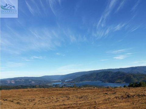 terrenos de 5000 mts2 en niebla cutipay alto