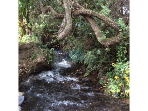 terreno con abundante agua