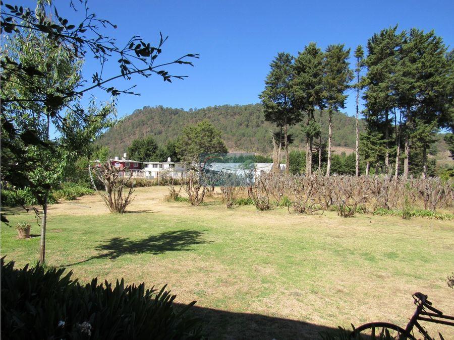 rancho amanalco