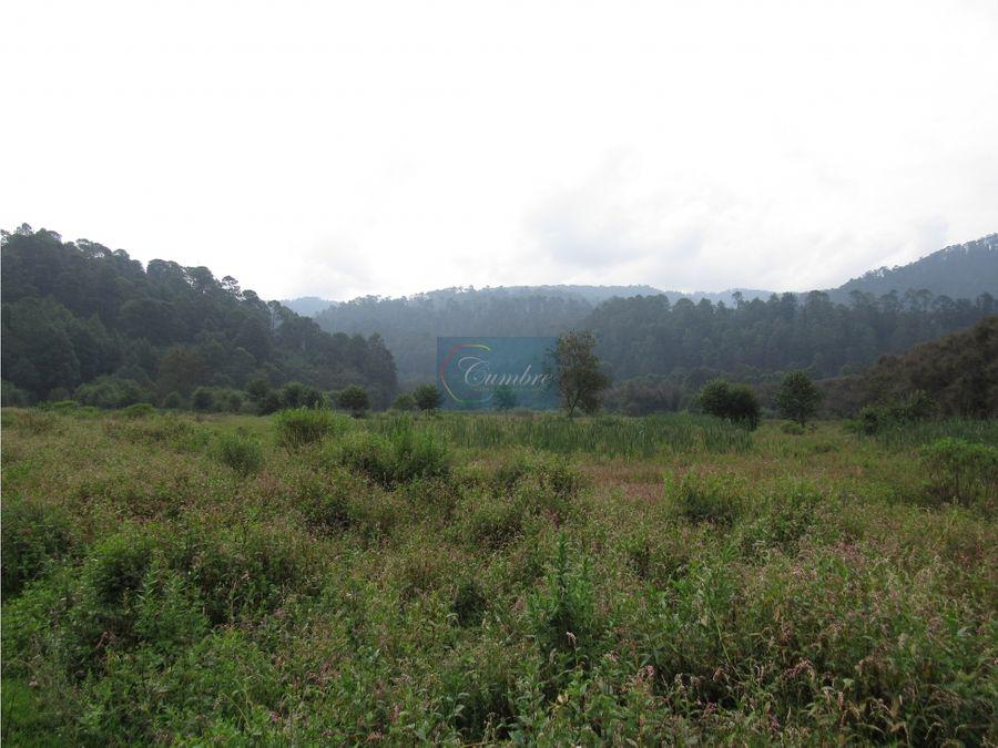 magnifico rancho entorno natural