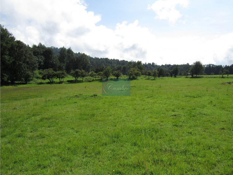 magnifico rancho con manantial