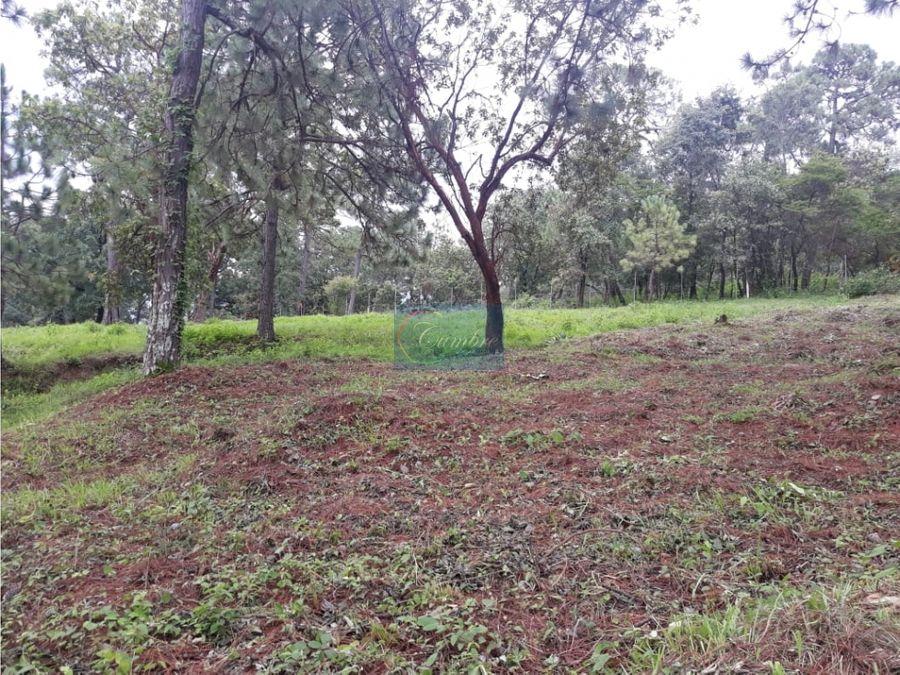 terreno con bosque en pinares del lago