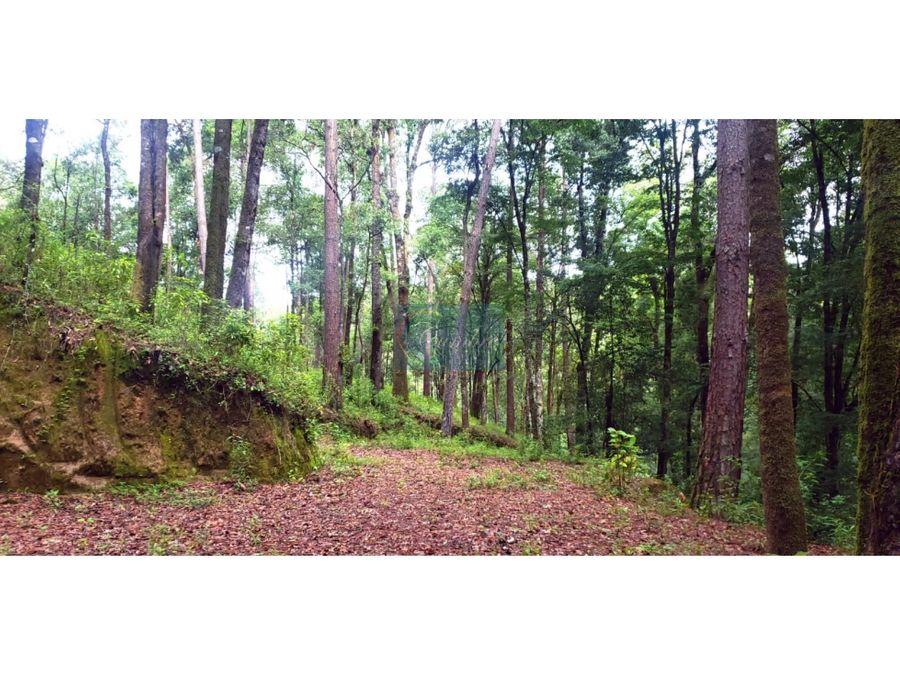 entorno natural con manantial