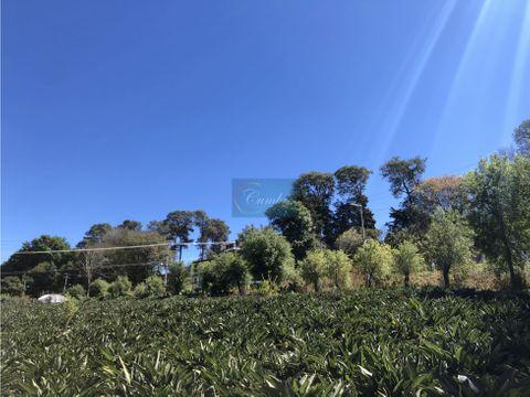 terreno aves de paraiso
