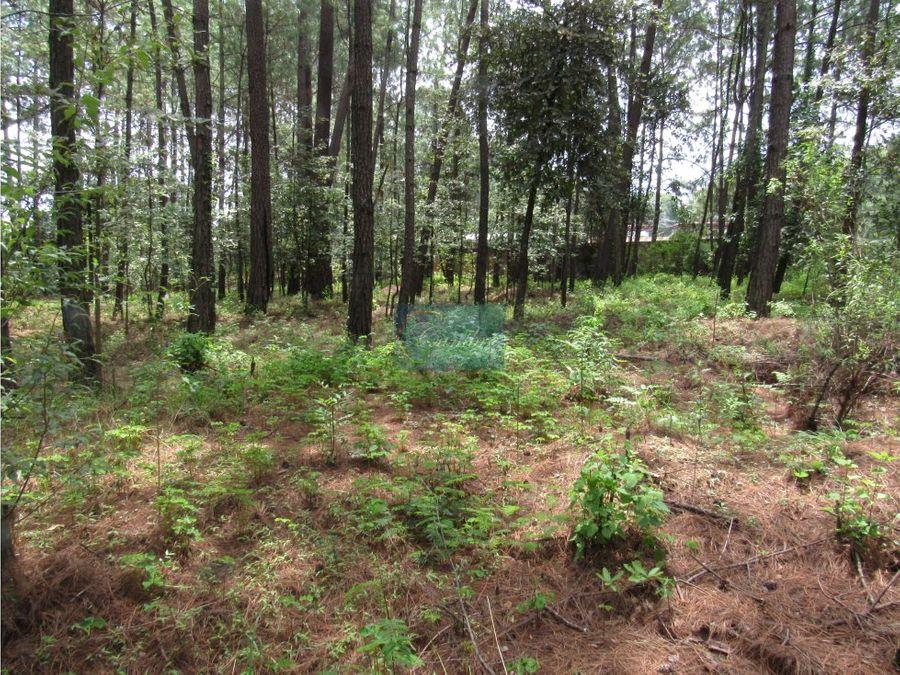 amplio terreno con excelente uso de suelo