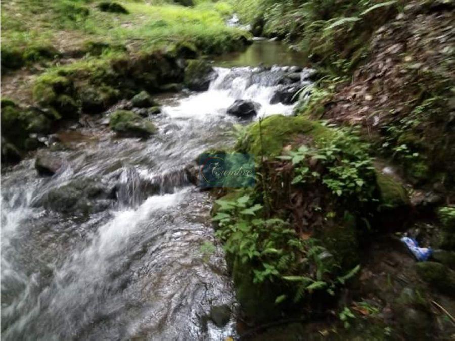 terreno ideal para rancho con abundante agua