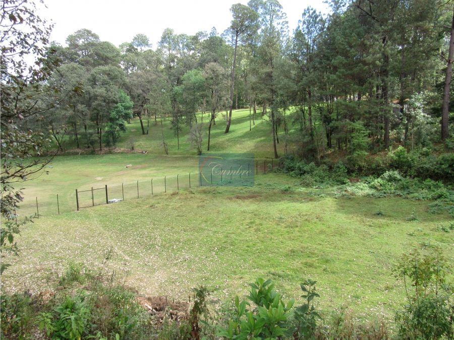 rancho rodeado de bosque con manantial