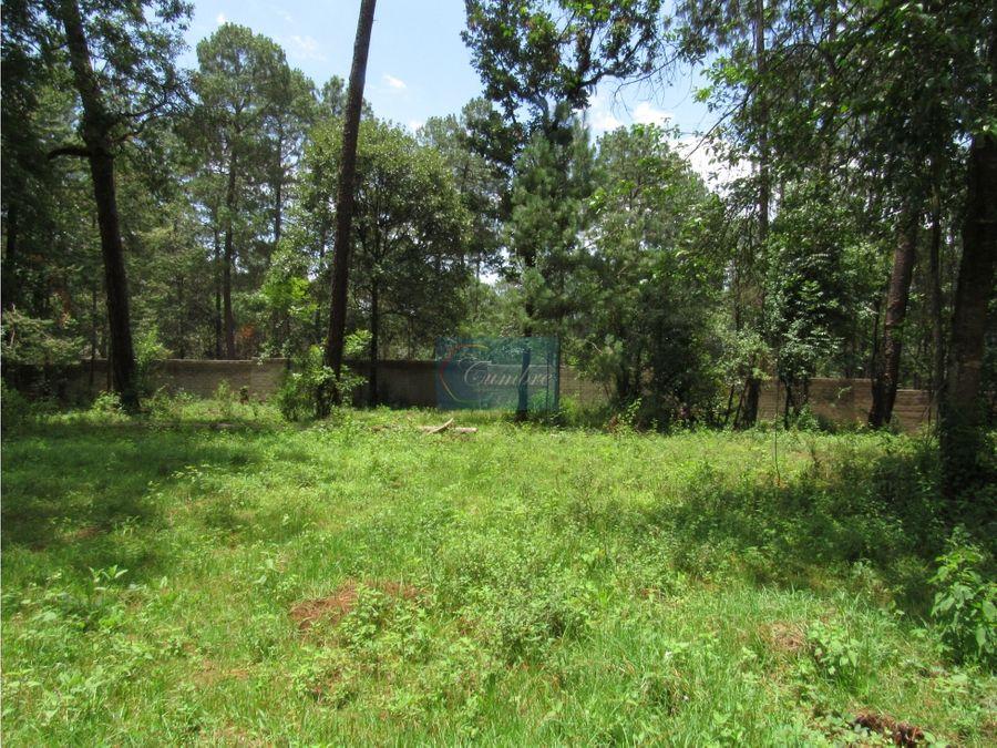 entorno boscoso