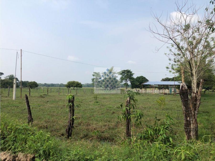 rancho en venta ubicado a 10 minutos del centro macuspana tabasco