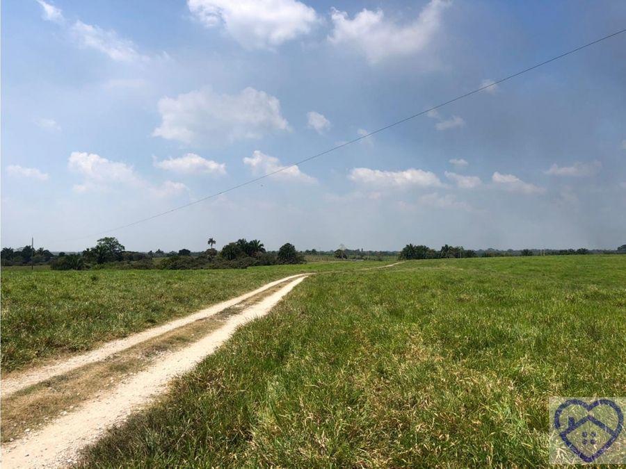 296 hectareas de terreno en venta a 10 minutos de reforma chiapas