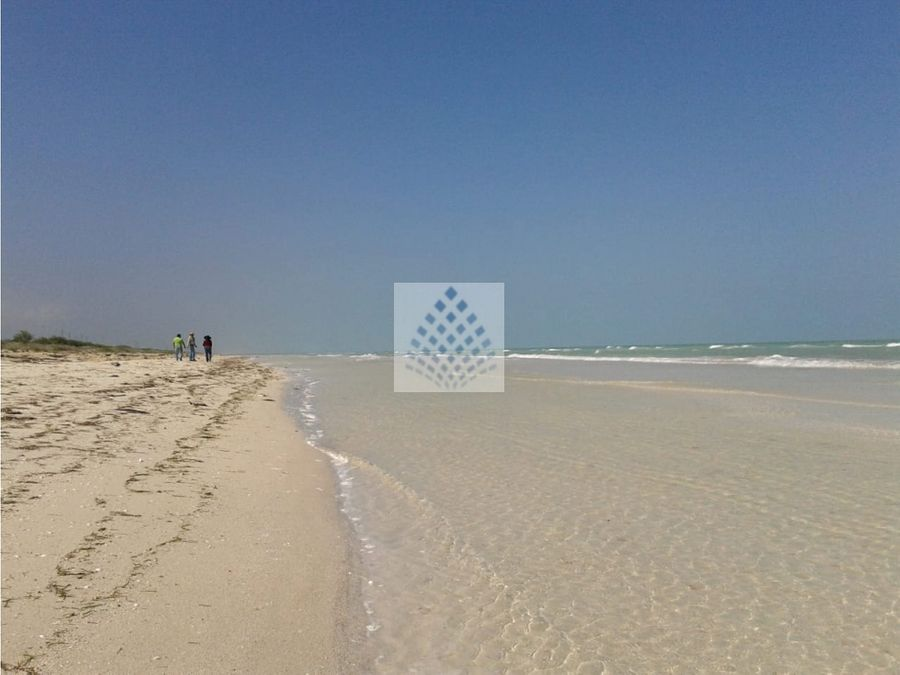 271 hectareas de terreno en playa rio largartos yucatan mar caribe
