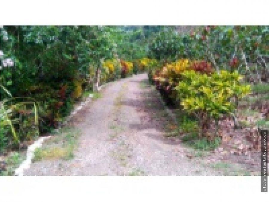 oportunidad terreno en venta carretera rio negro satipo