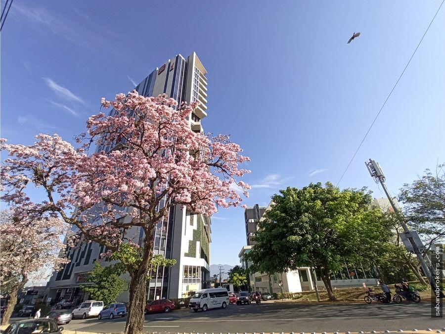 oficina sabana business center