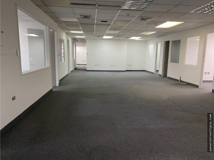 oficina en alquiler el rosal 456 m2