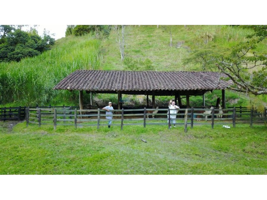 farm for sale girardota antioquia colombia
