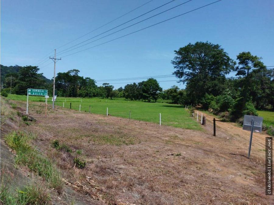 precioso terreno sobre ruta 34 la costanera a 3 km de dominical