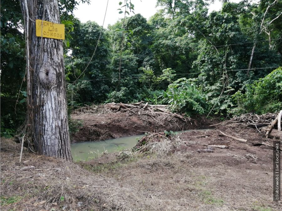se vende lote en desarrollo ecologico sueno escondido