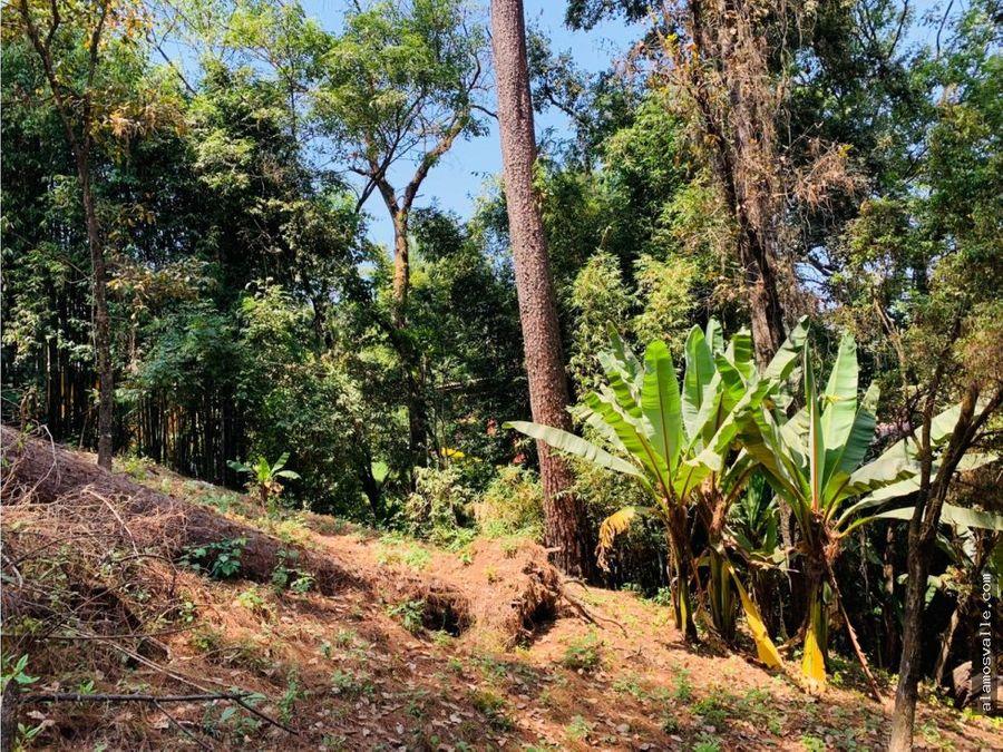 terreno vega del manantial