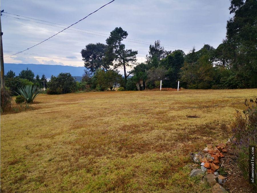 terreno en venta san gabriel ixtla
