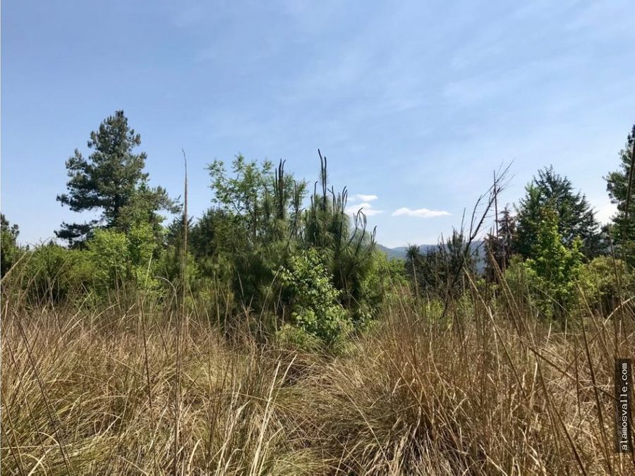valle santana terreno en venta