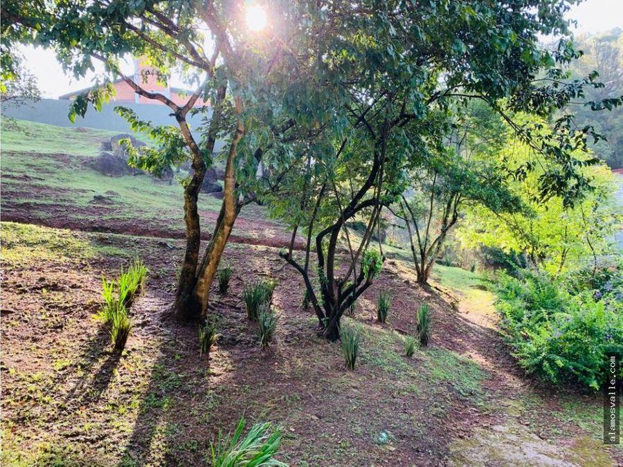 bosques de coporito
