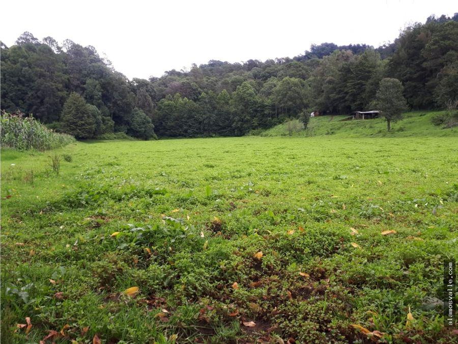 terreno paraje san ramon