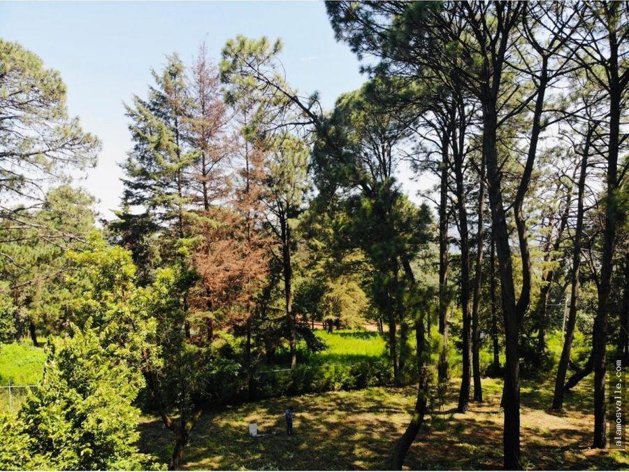 terreno boscoso en venta avandaro
