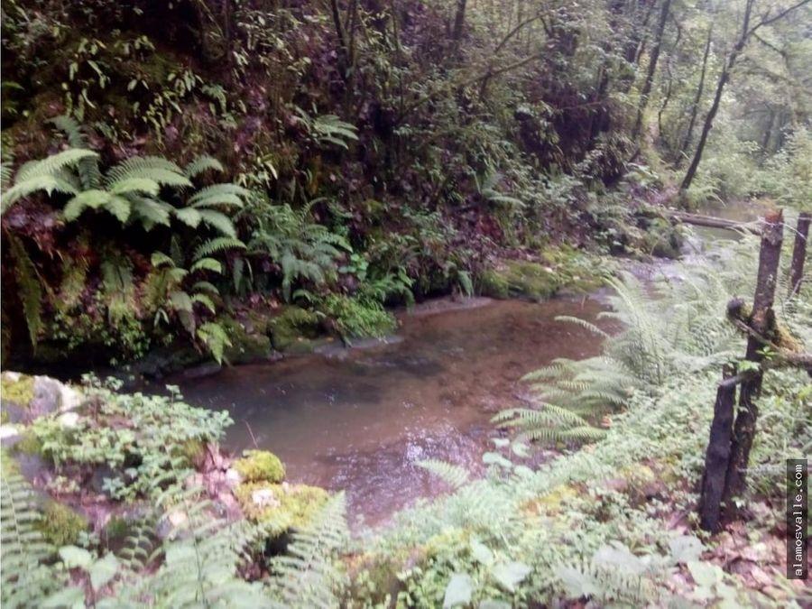terreno con rio las agujas
