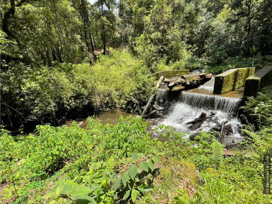 terreno con rio en venta en san simon