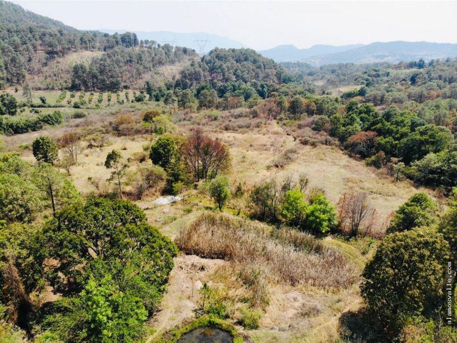rancho el aguacate tiloxtoc