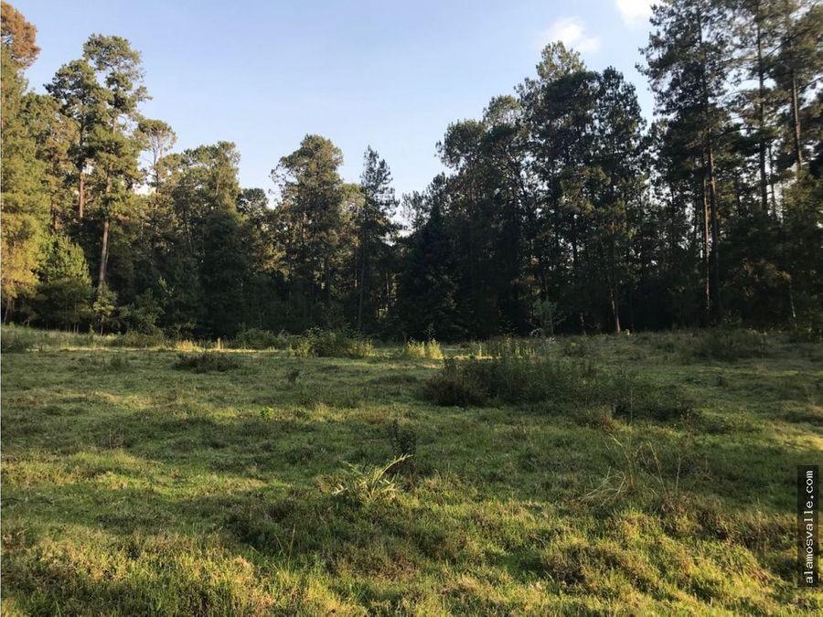 terreno san ramon 2