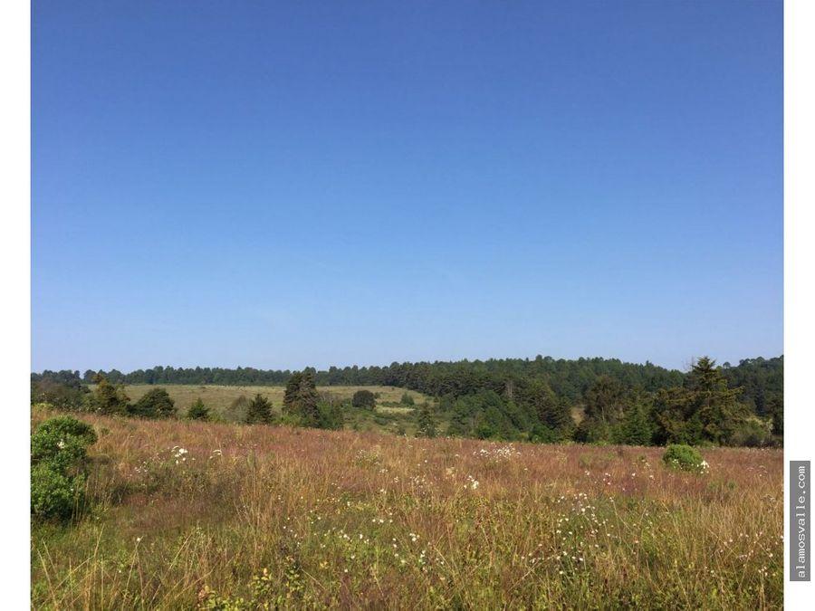rancho el pinal