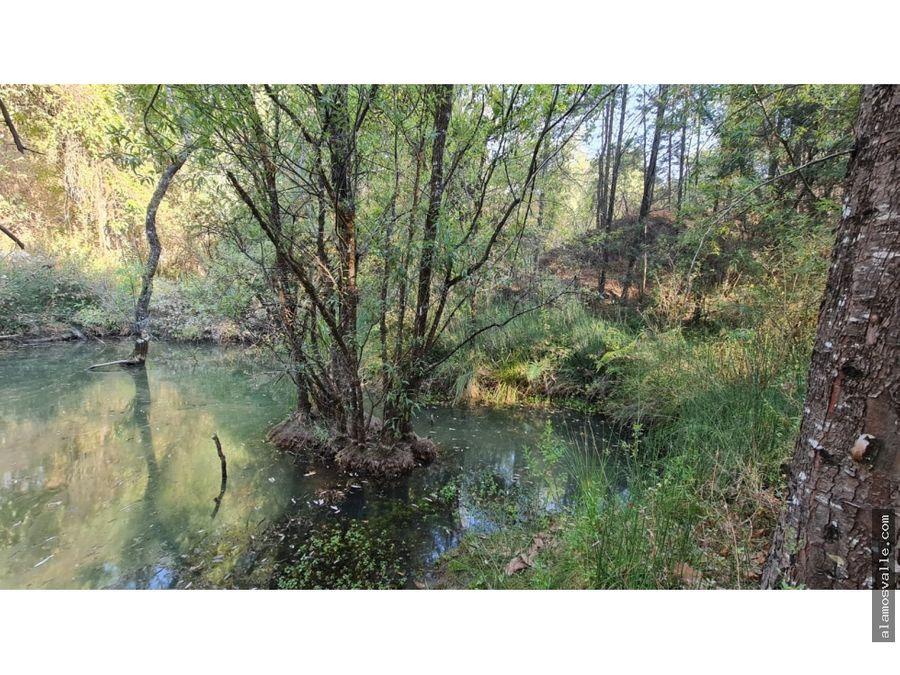 rancho arroyo