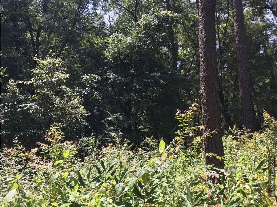 terreno en venta en avandaro con vista al bosque