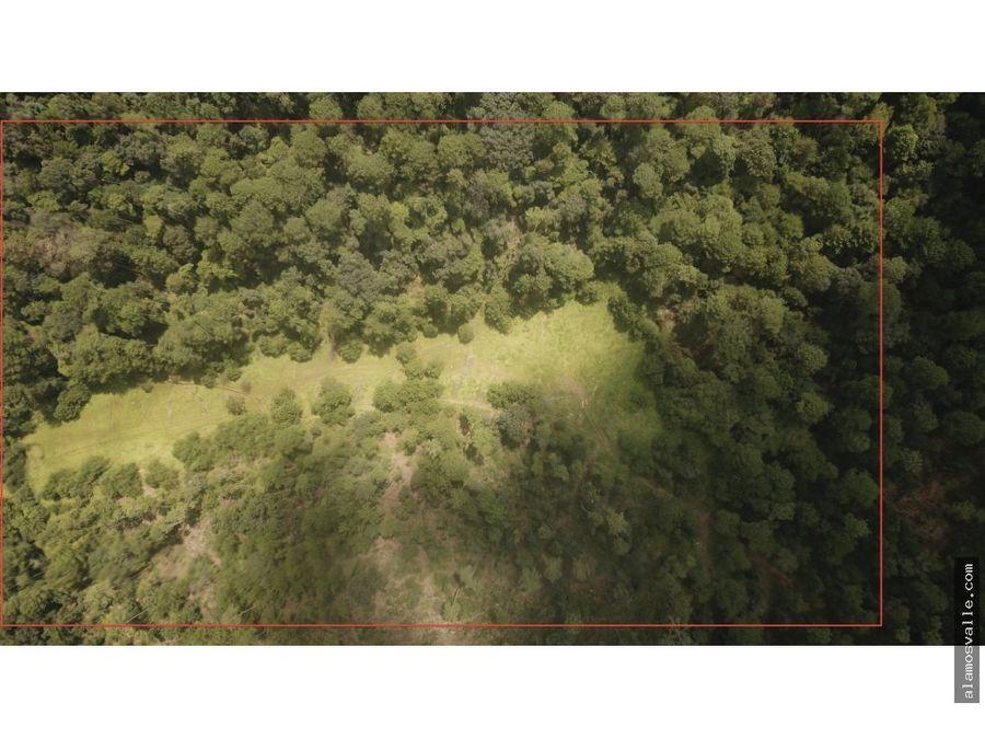 terreno pinal de osorio