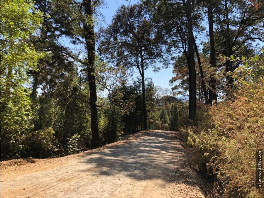 terreno camino a los alamos