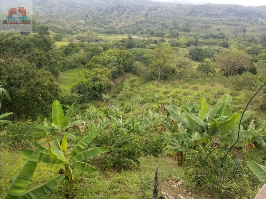 se vende finca en obando valle colombia