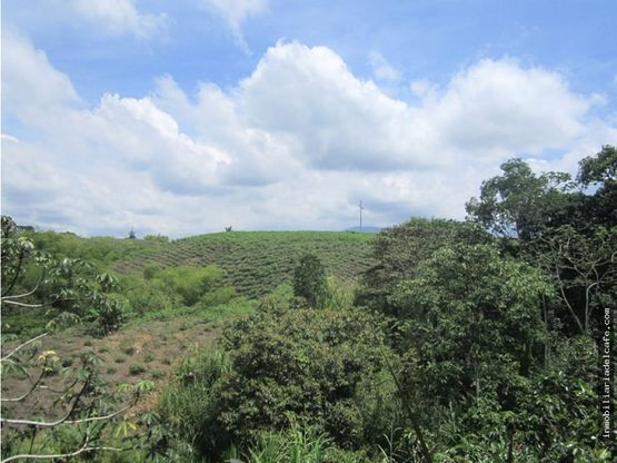 venta lote en el occidente de armenia quindio