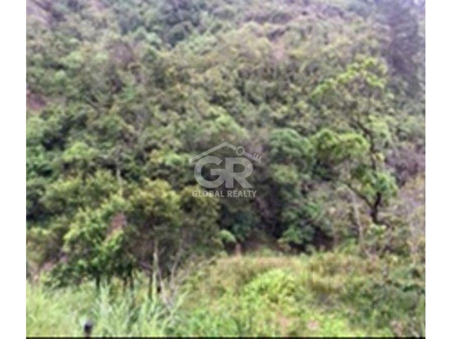 venta de terreno en el guarco palmital sur cartagocr 1188