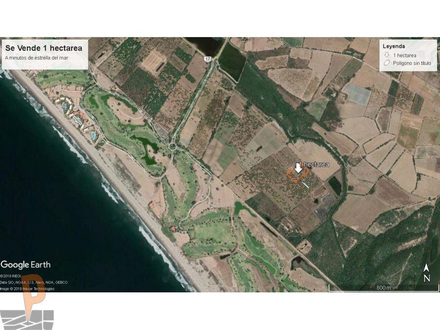 1 hectarea en isla de la piedra mazatlan
