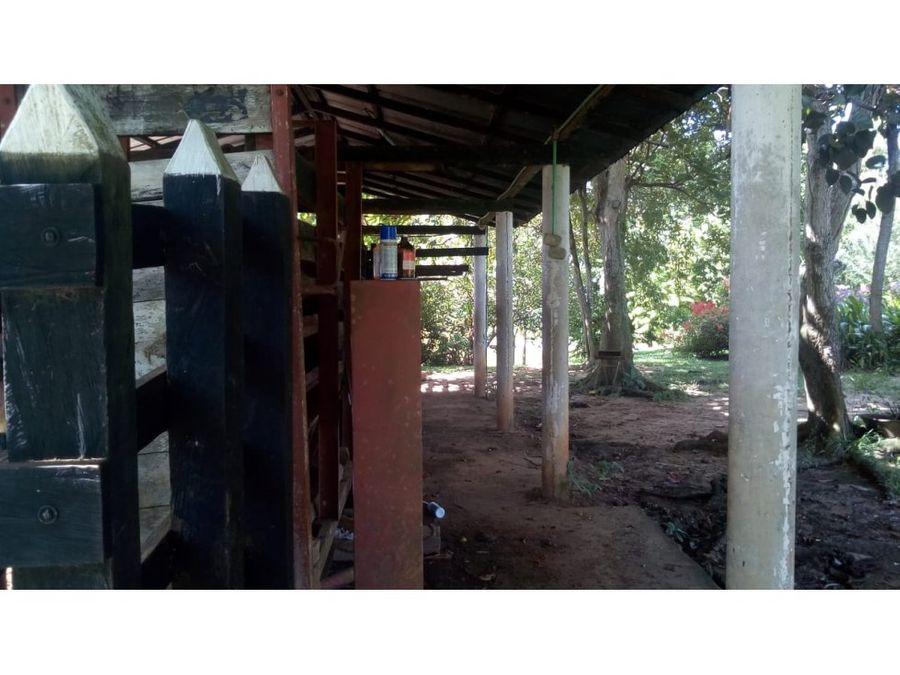 finca 152 hectareas via carrizal