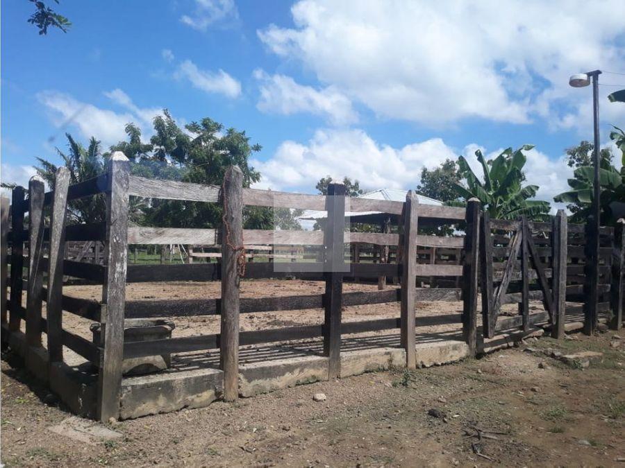 finca 9 hectareas bien ubicada